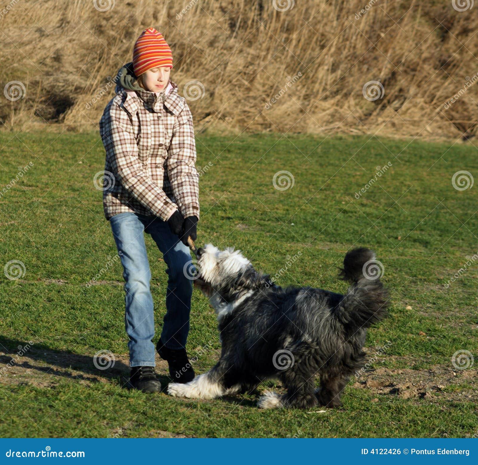Het vechten van de hond en van het meisje over een stok