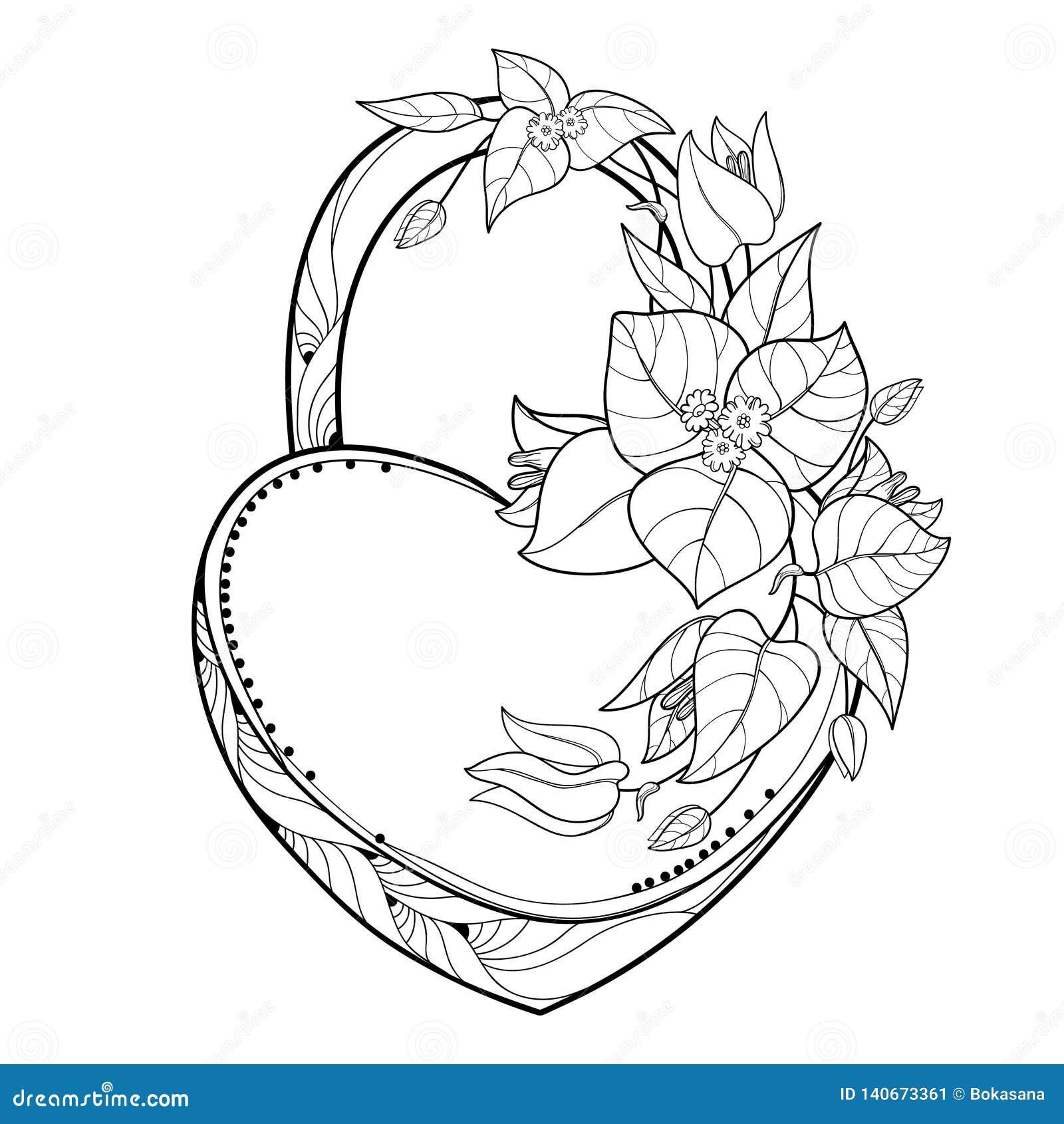 Het vectordiehangslothart met de Bougainvillea van de overzichtsbos of Buganvilla bloeit, blad en knop in zwarte op witte achterg