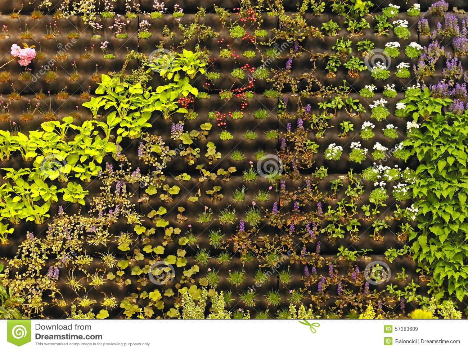 Het verticale tuinieren