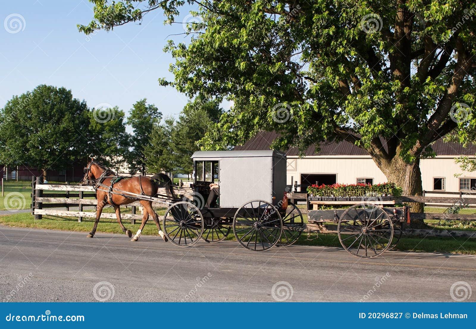Het Vervoer van Amish en de Kar van de Bloem