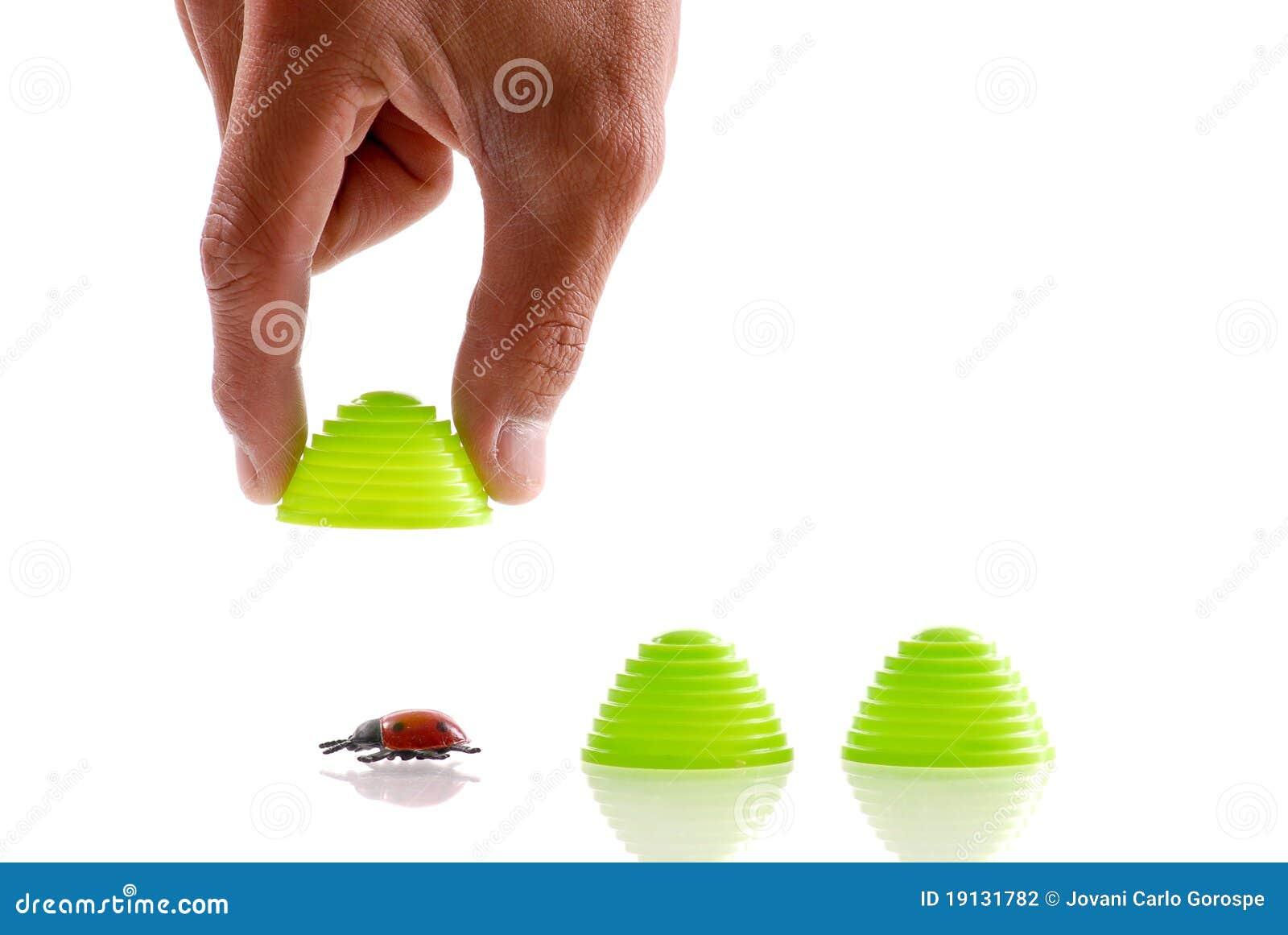 Het vinden van het Insect