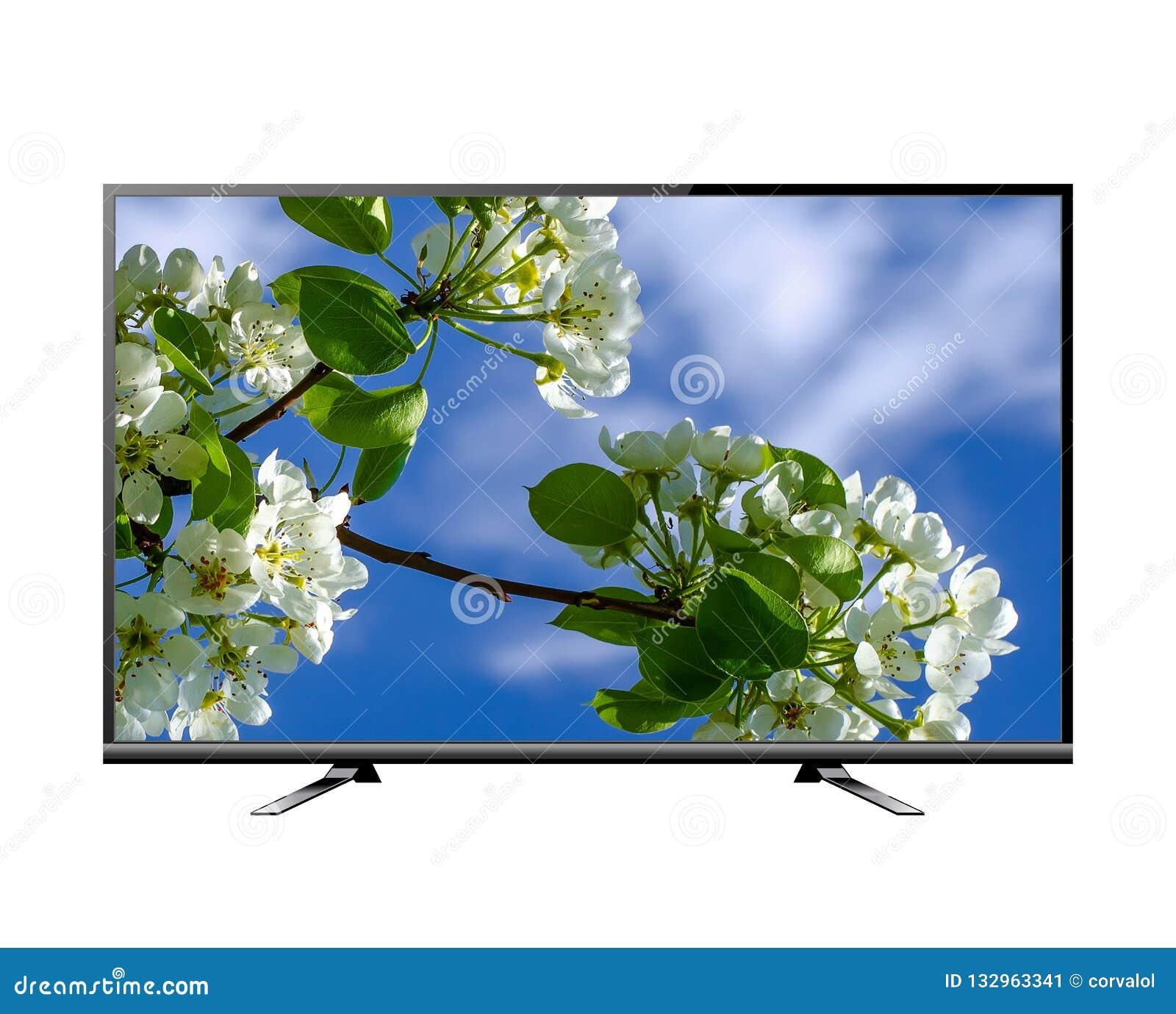 Het vlakke scherm lcd, plasma realistische illustratie van TV