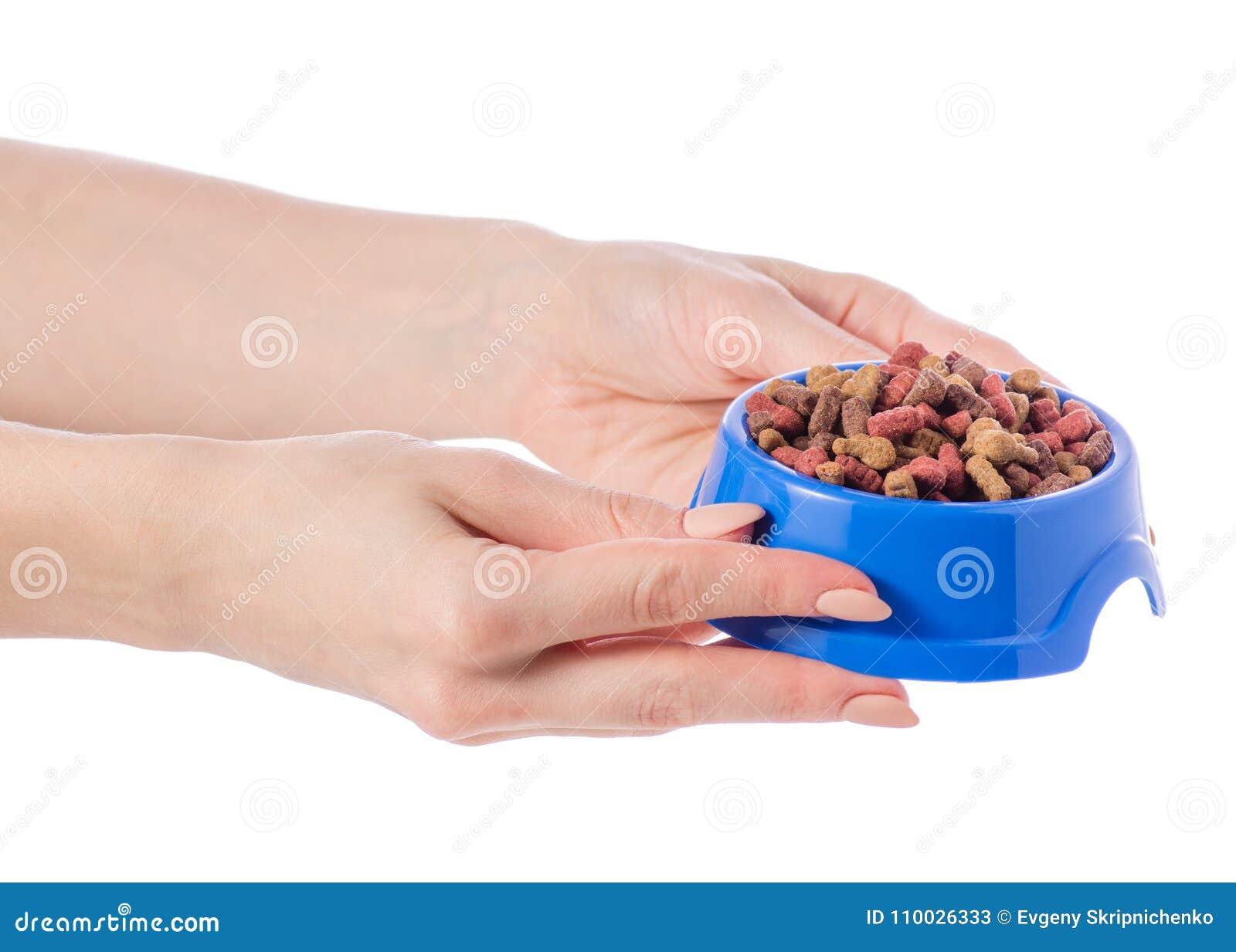 Het voedsel voor honden en de katten in een blauw werpen ter beschikking