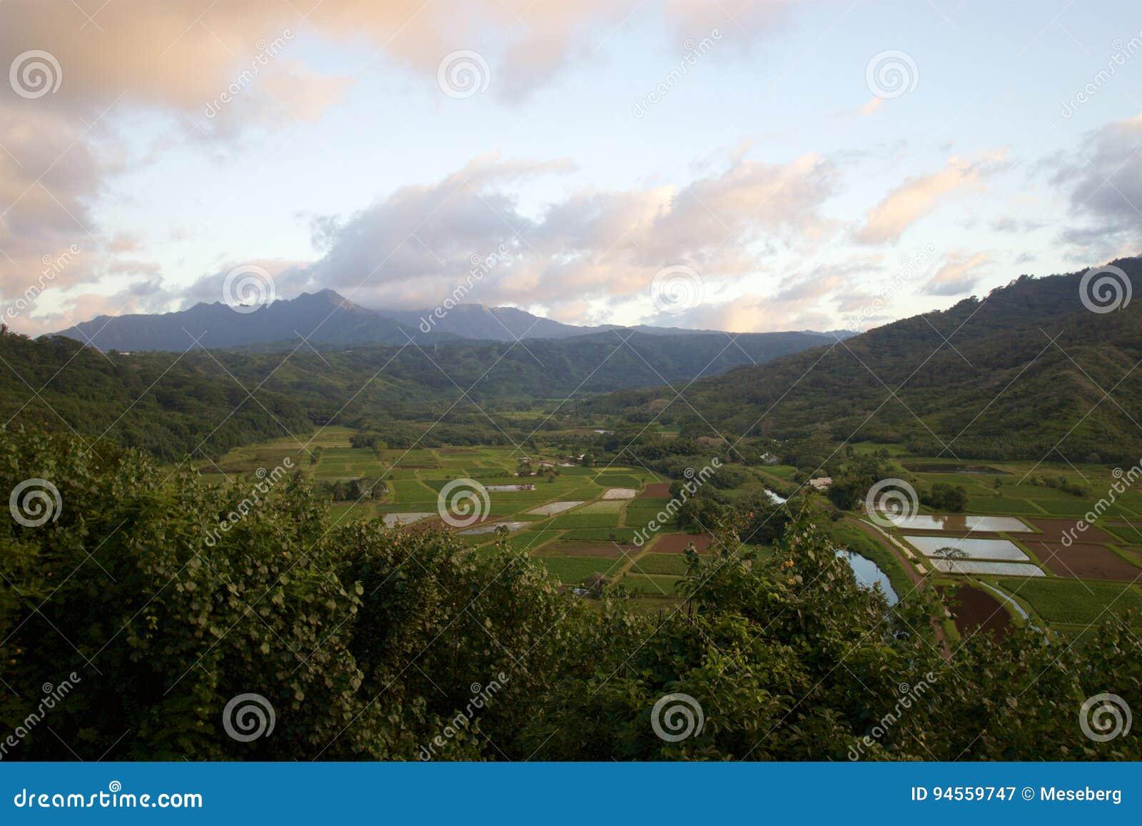 Het Vooruitzicht van de Hanaleivallei