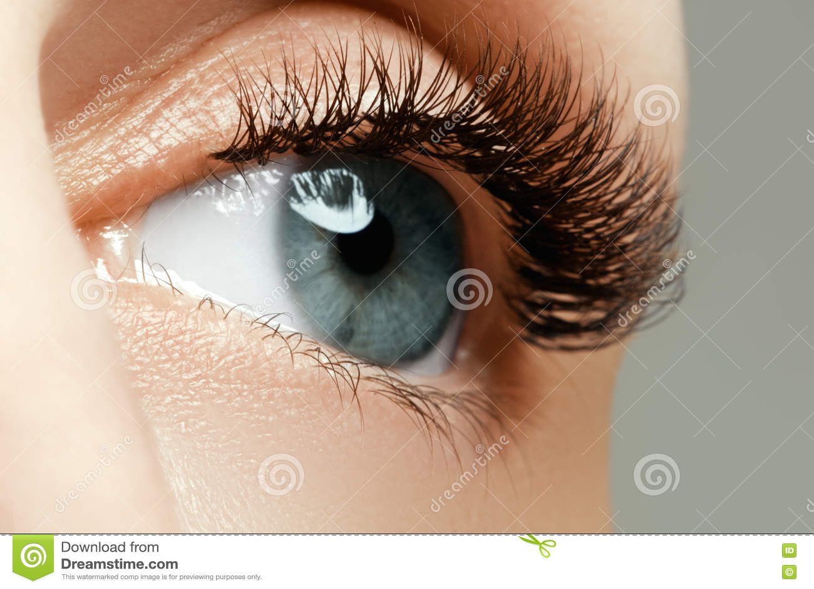 Het vrouwelijke oog met lange wimpers sluit omhoog Close-up van wijfje wordt geschoten dat