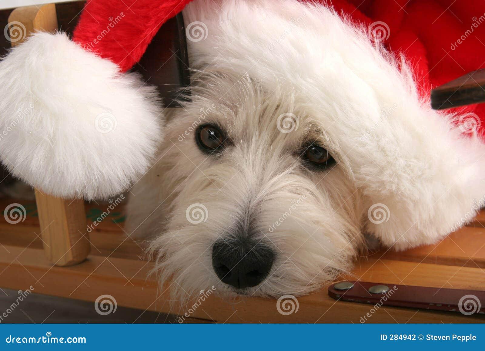 Het wachten op de Kerstman