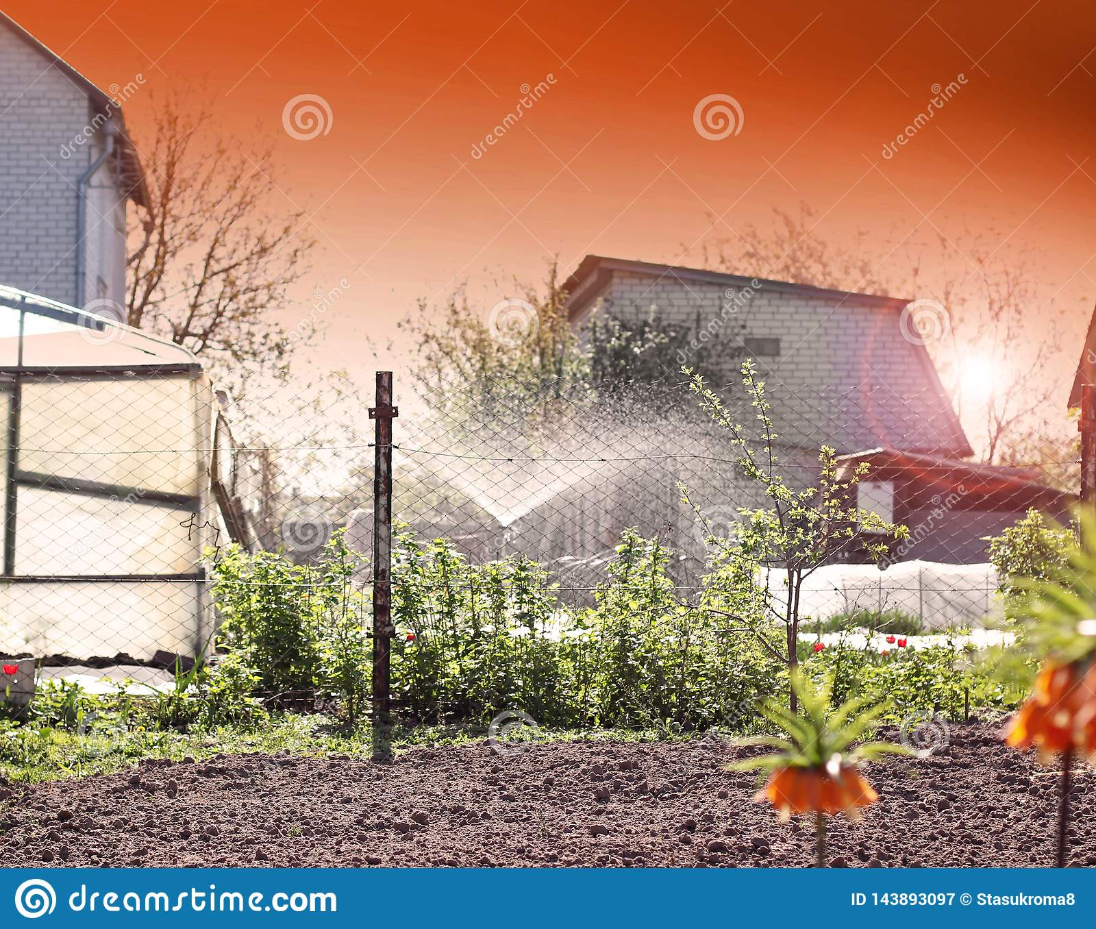 Het water geven systeem in de tuin