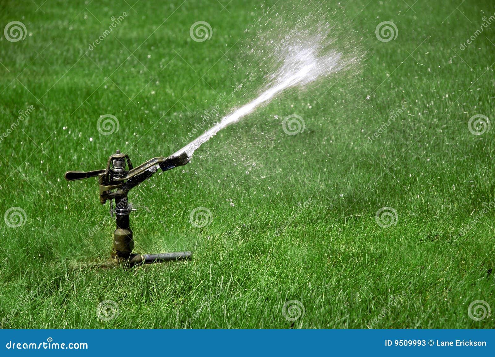 Het water geven van de sproeier gebied van groen gras stock foto 39 s beeld 9509993 - Groen behang van het water ...