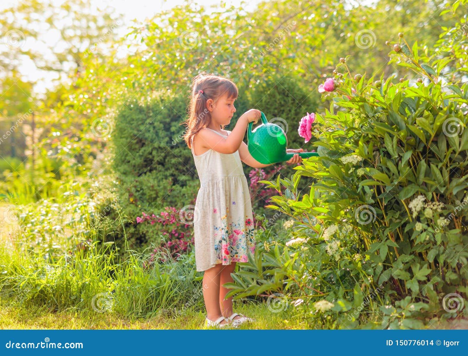 Het water geven van het meisje bloemen in de tuin