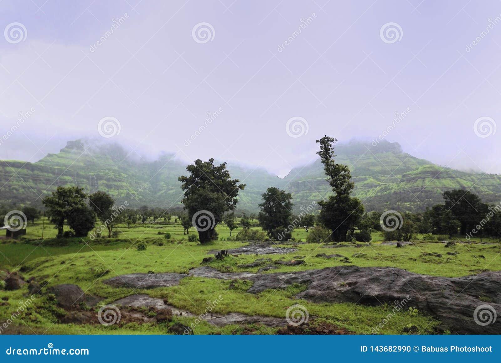 Het weelderige groene landschap met moesson betrekt het onderdompelen op de bergen bij de achtergrond