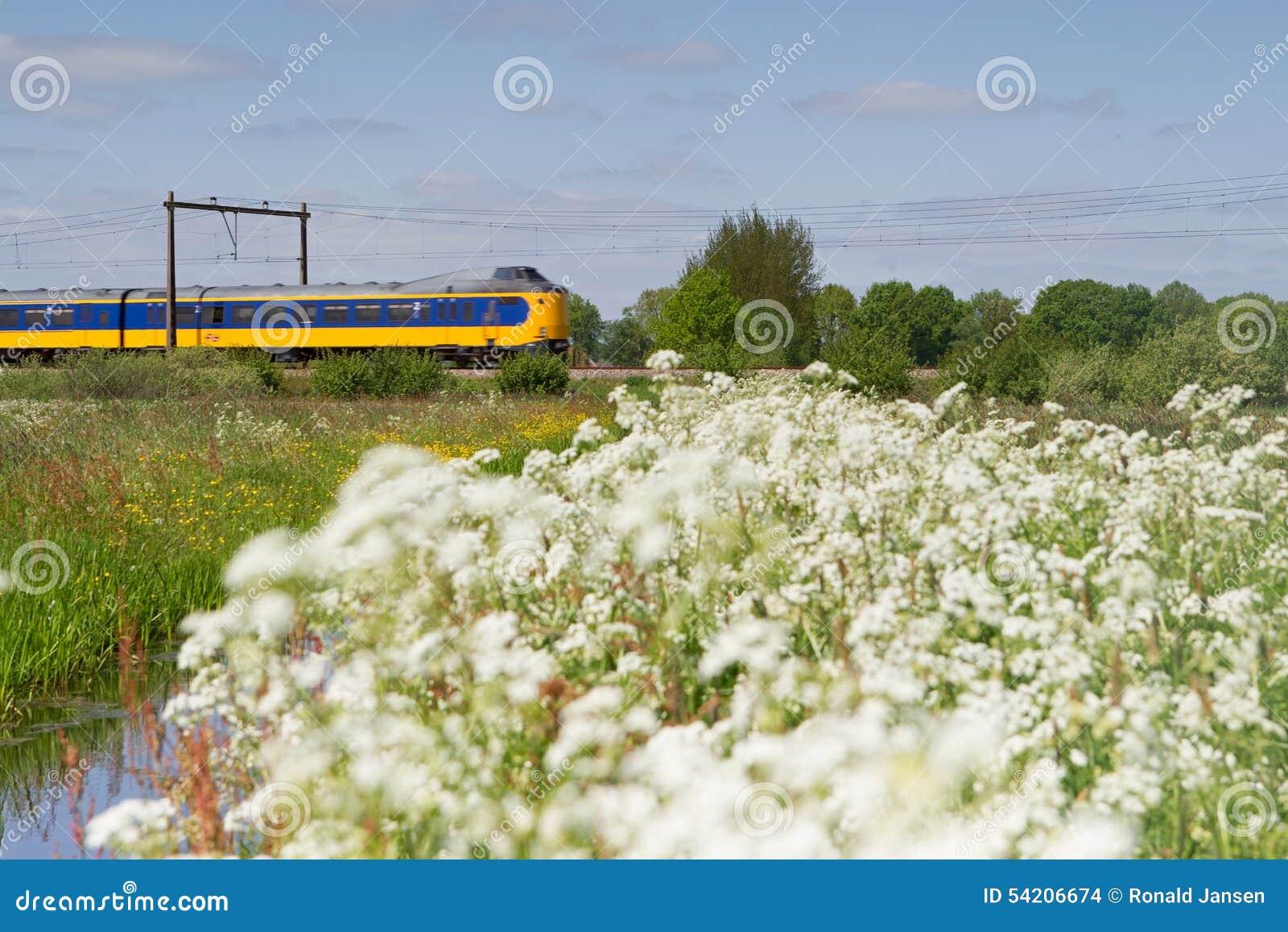 Het weiland van treinpassen in Hoogeveen, Nederland