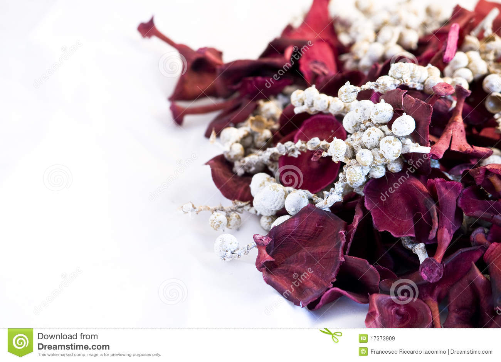 Het welriekend mengsel van gedroogde bloemen en kruidenbloemen van Kerstmis op witte achtergrond