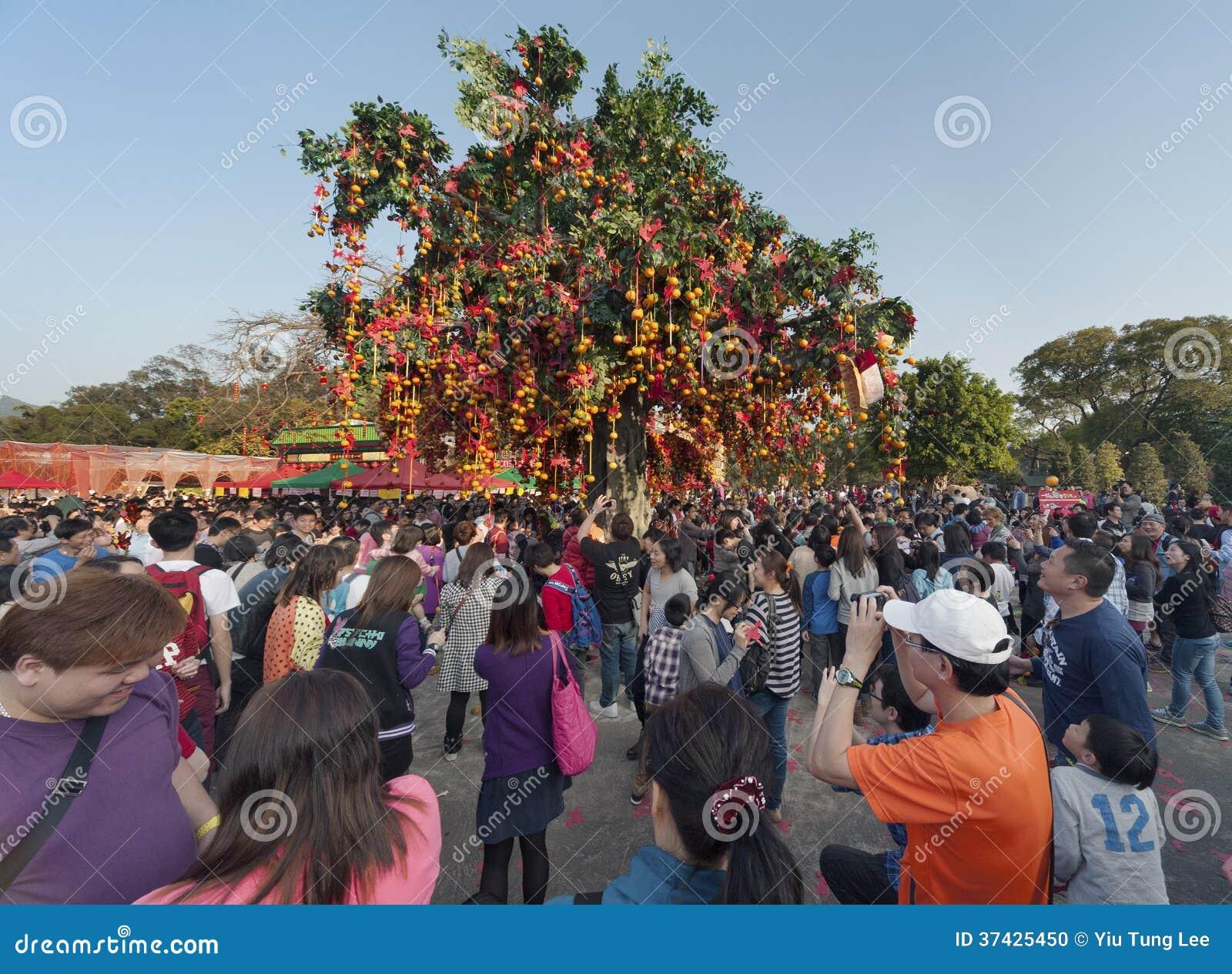 Het wensen van boom