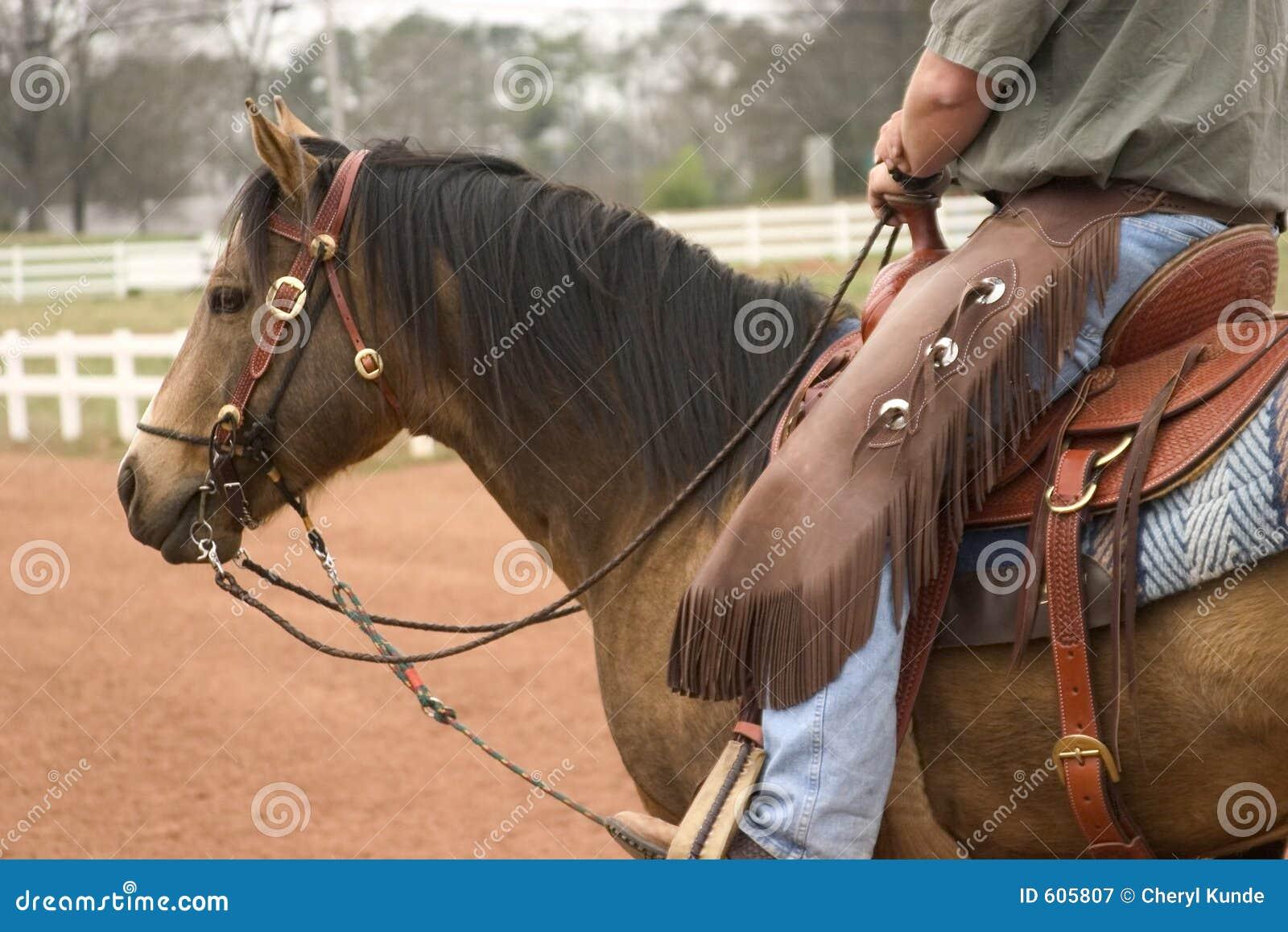 Het werk Paard