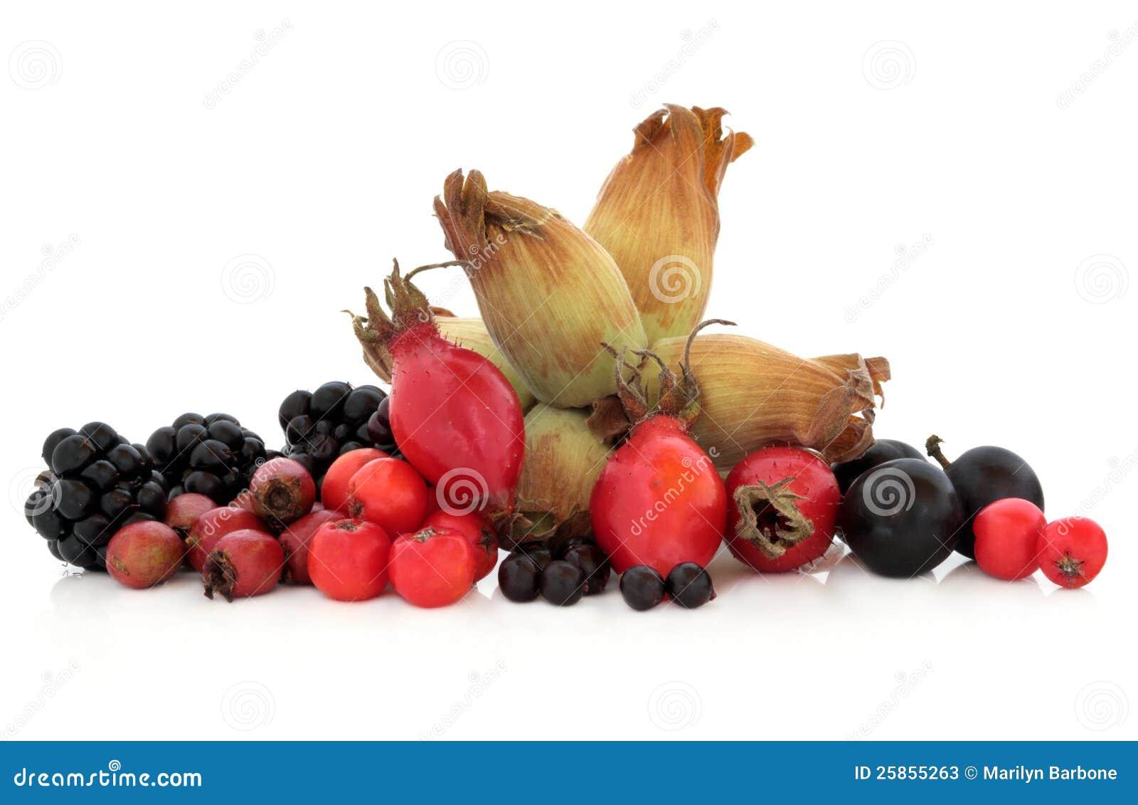 Het wilde Fruit van de Herfst