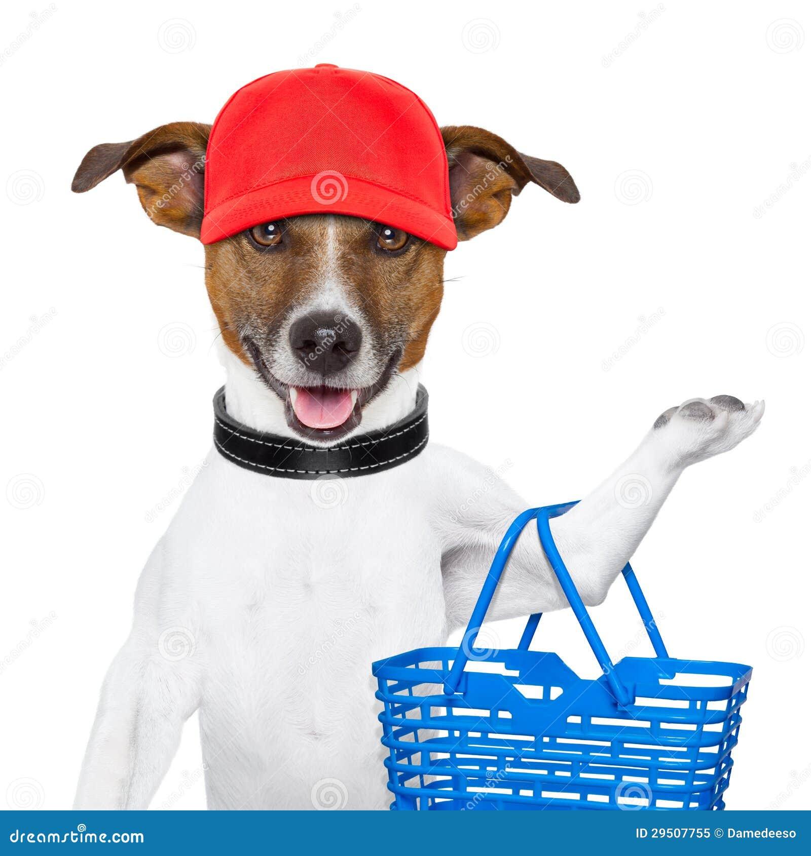Het winkelen hond