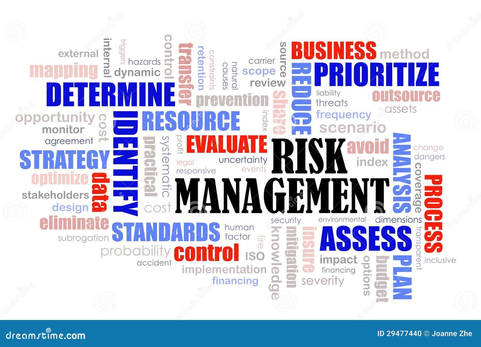 Het woordwolk van het Beheer van het risico