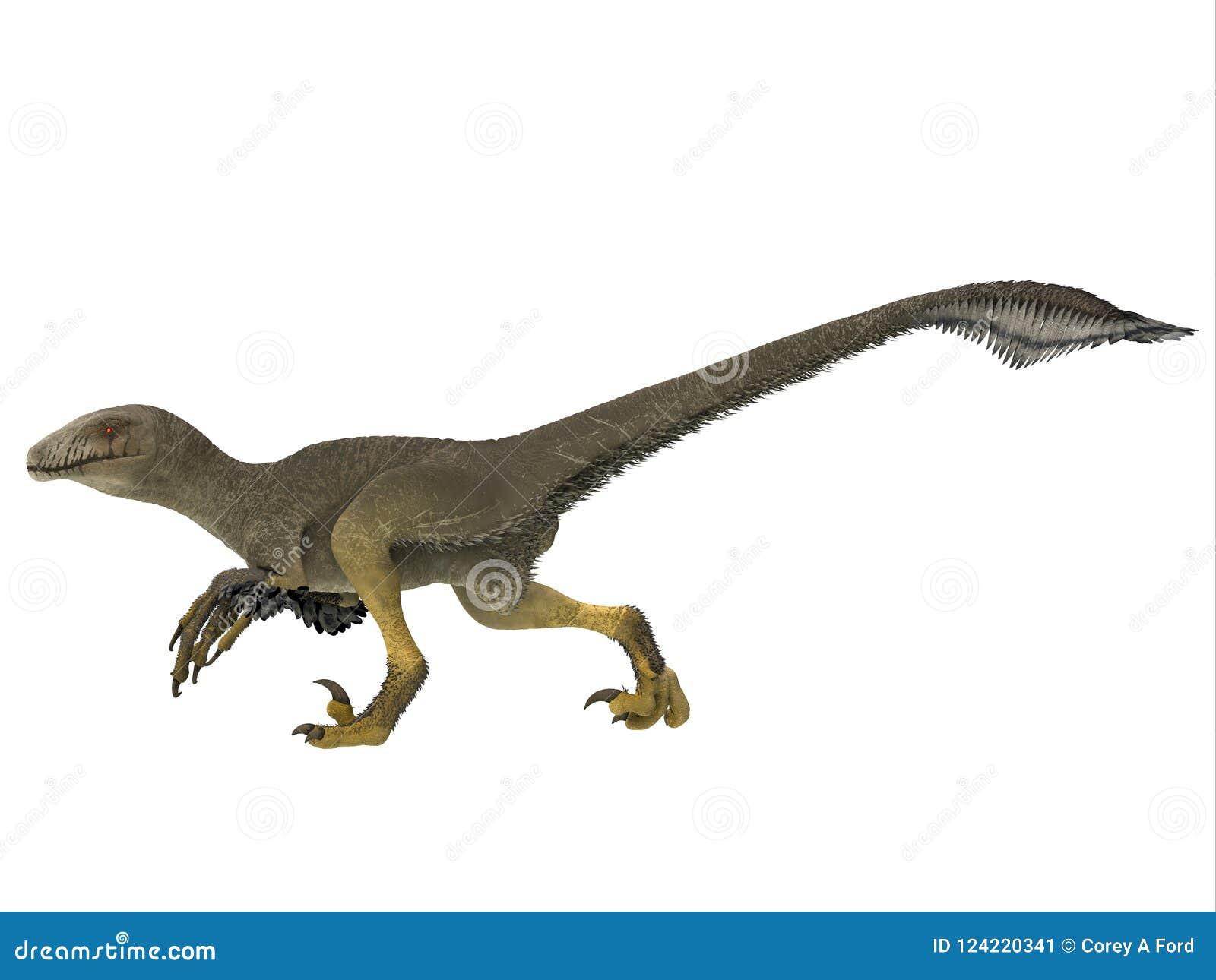 Het Zijprofiel van de Dakotaraptordinosaurus