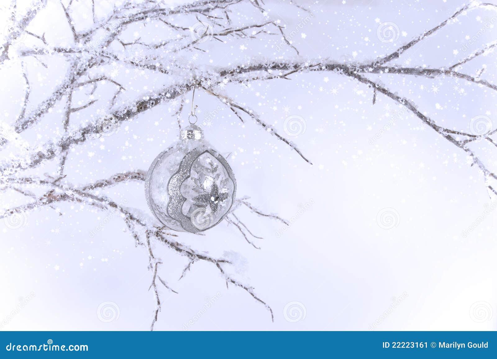 Het zilveren & Duidelijke Ornament van Kerstmis op Tak