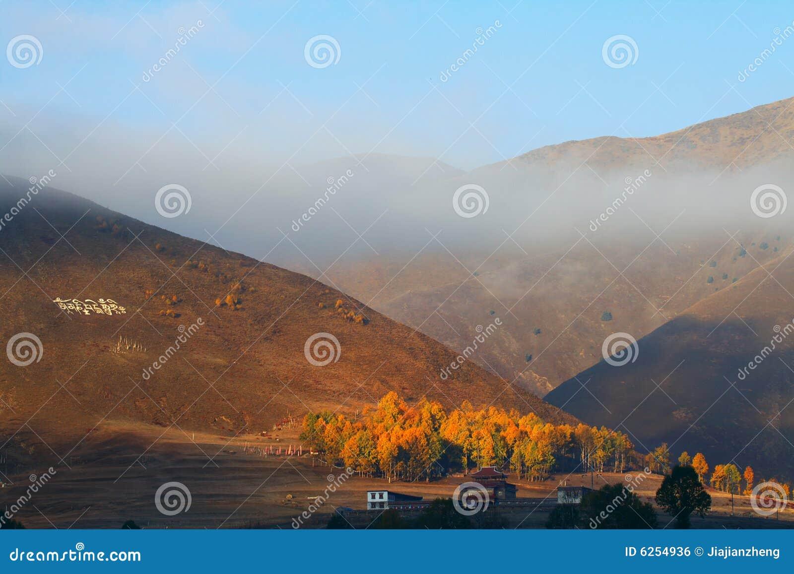 Het zonlicht van Altiplano