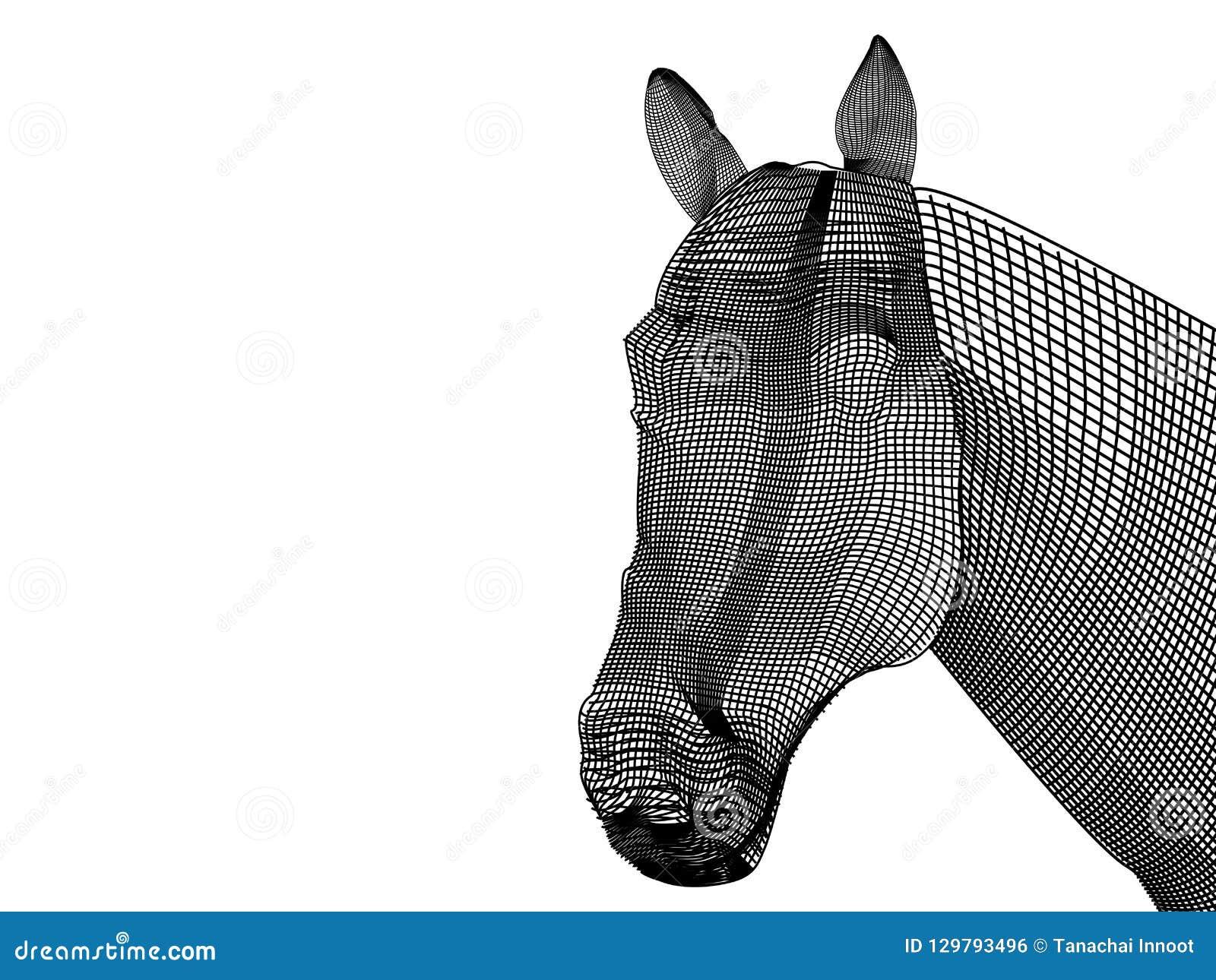 Het zwart-witte netwerk van paard