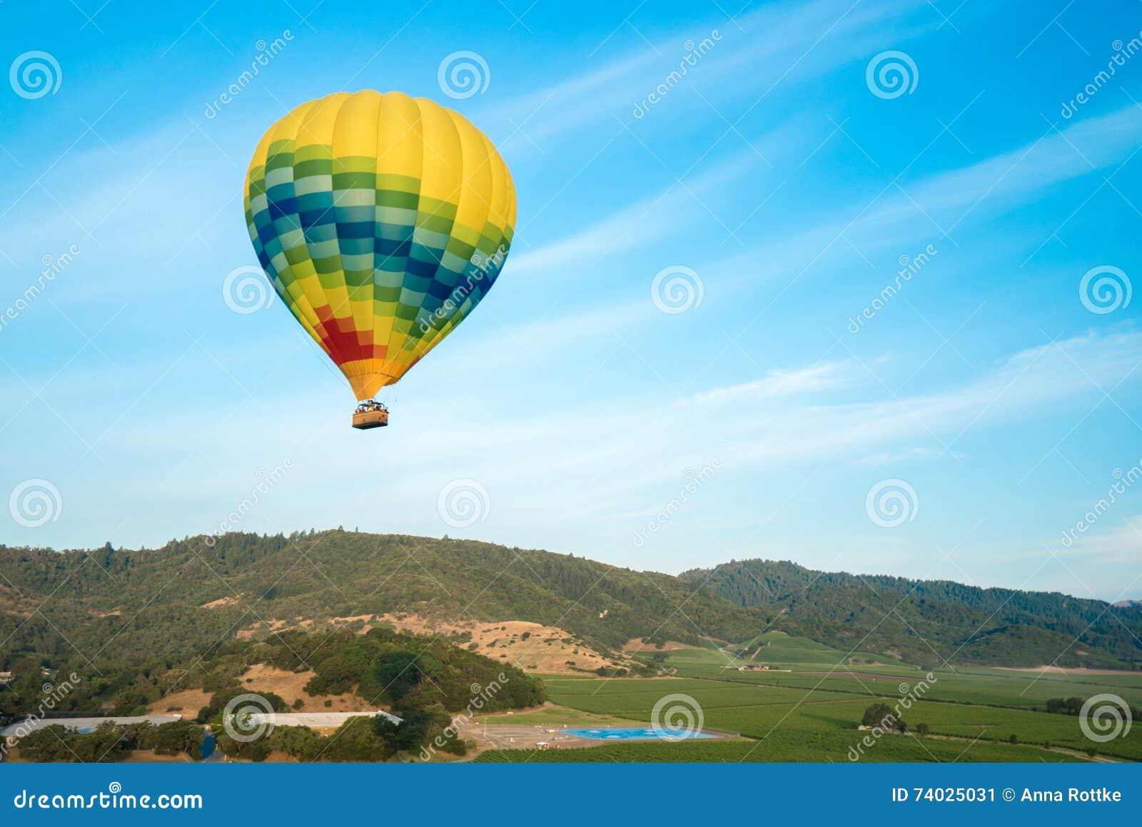 Hete Luchtballons die boven Wijngaarden drijven