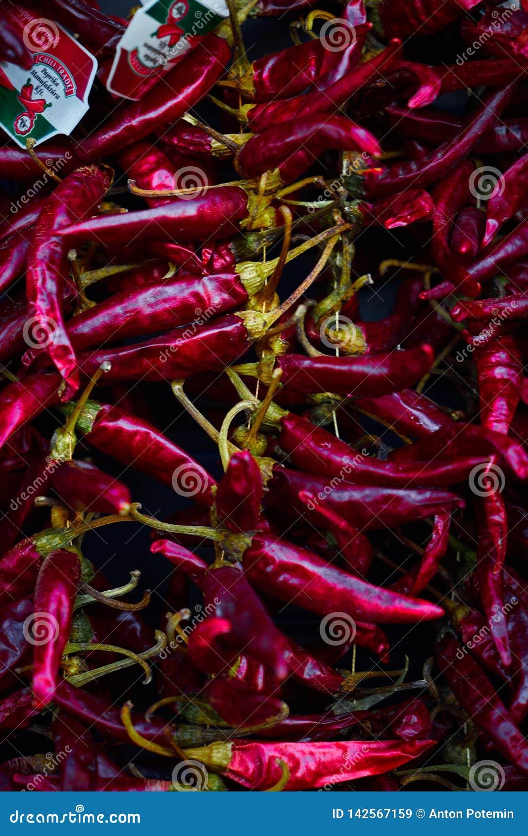 Hete Spaanse pepers die op de muur hangen