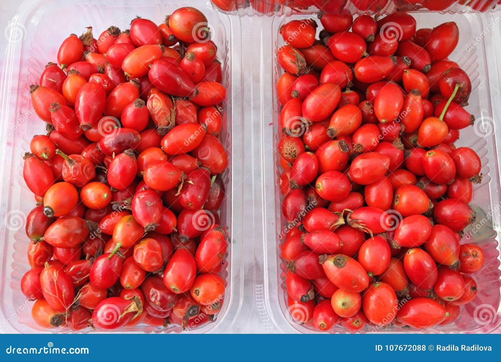Heupen Verse organische rode rozebottels in plastic kom