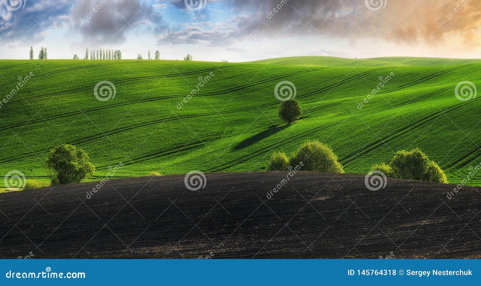 Heuvelig gebied De lenteheuvels