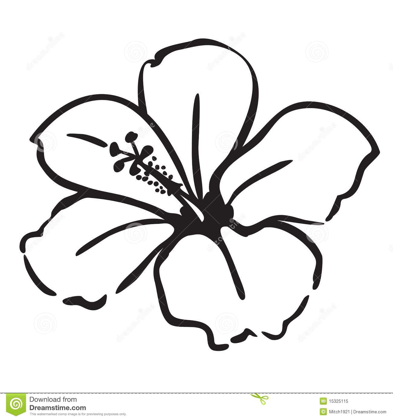 Flower Drawings Simple: Hibiscus Stock Vector. Illustration Of Clipart, Artistic