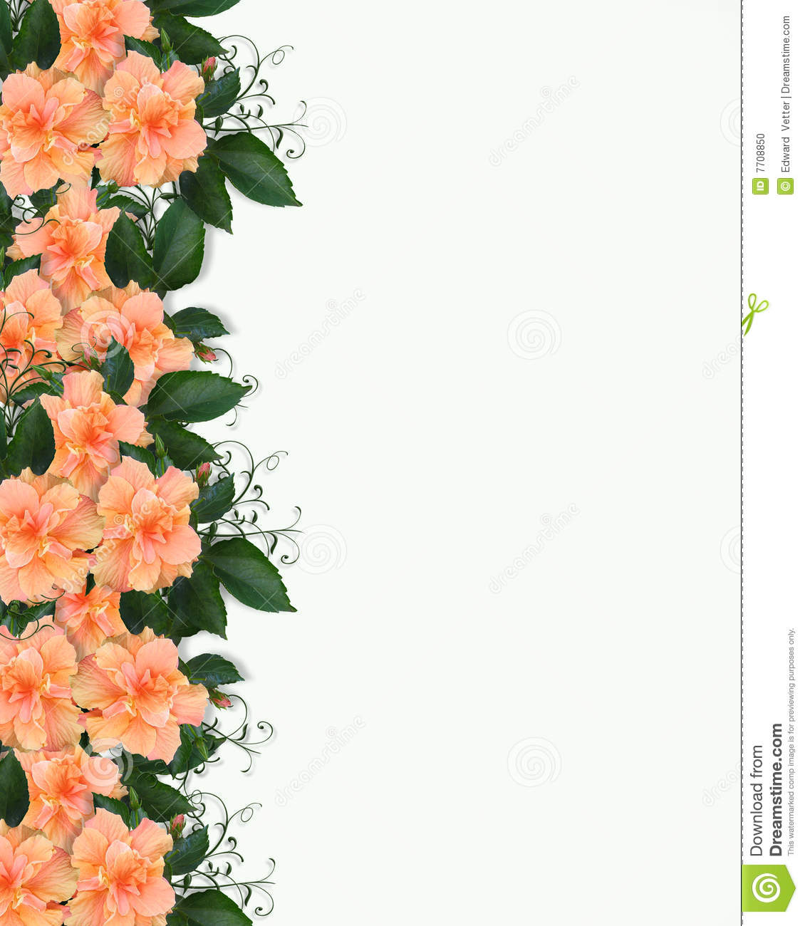hibiscus floral border invitation stock photo image 7708850 fried chicken clipart pattern fried chicken clip art pics