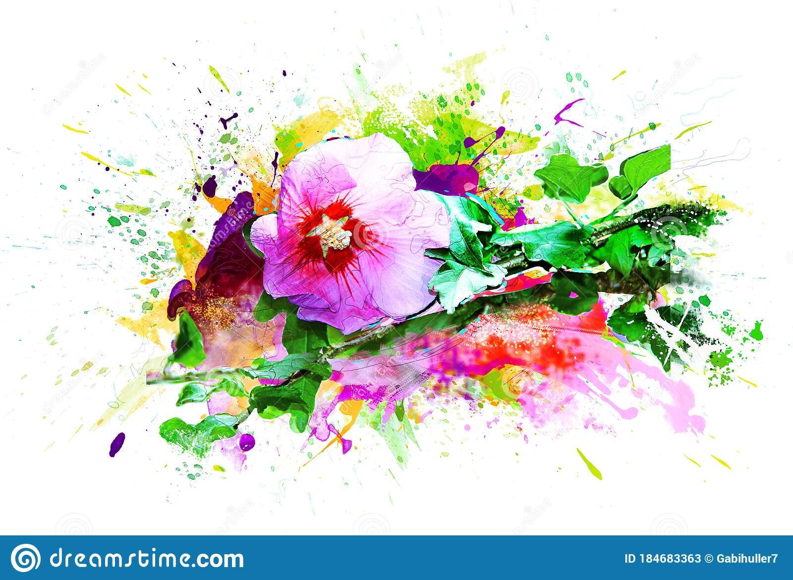 Hibiscus Flower Abstract Pink Green Watercolor Art Illustration Isolated White Background Stock Image Image Of Isolated Aquarell 184683363