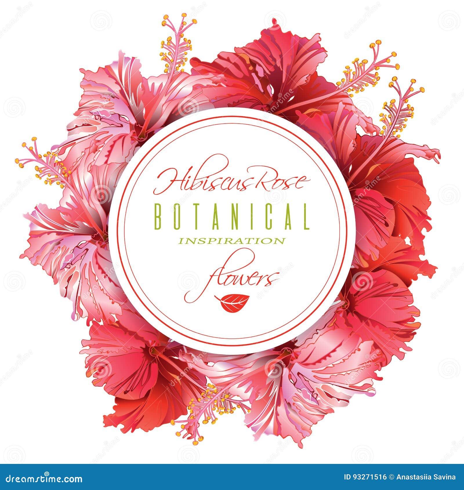 Hibiscus Chinese Food