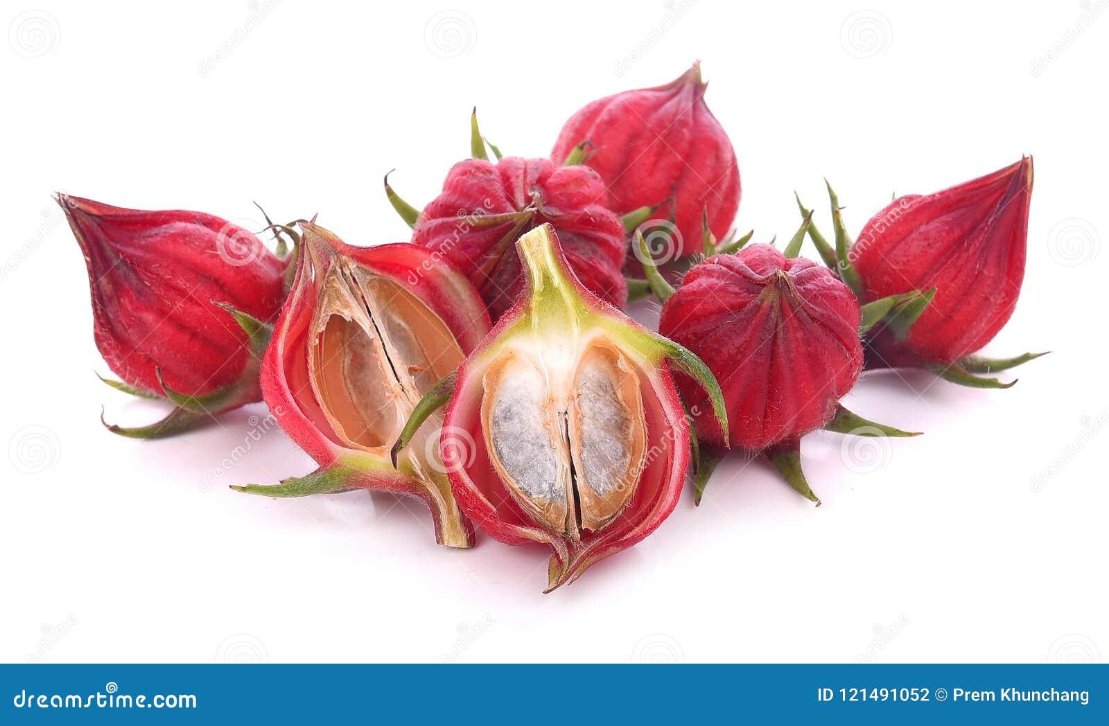 Hibiscus sabdariffa ή roselle φρούτα που απομονώνεται στο άσπρο backgrou