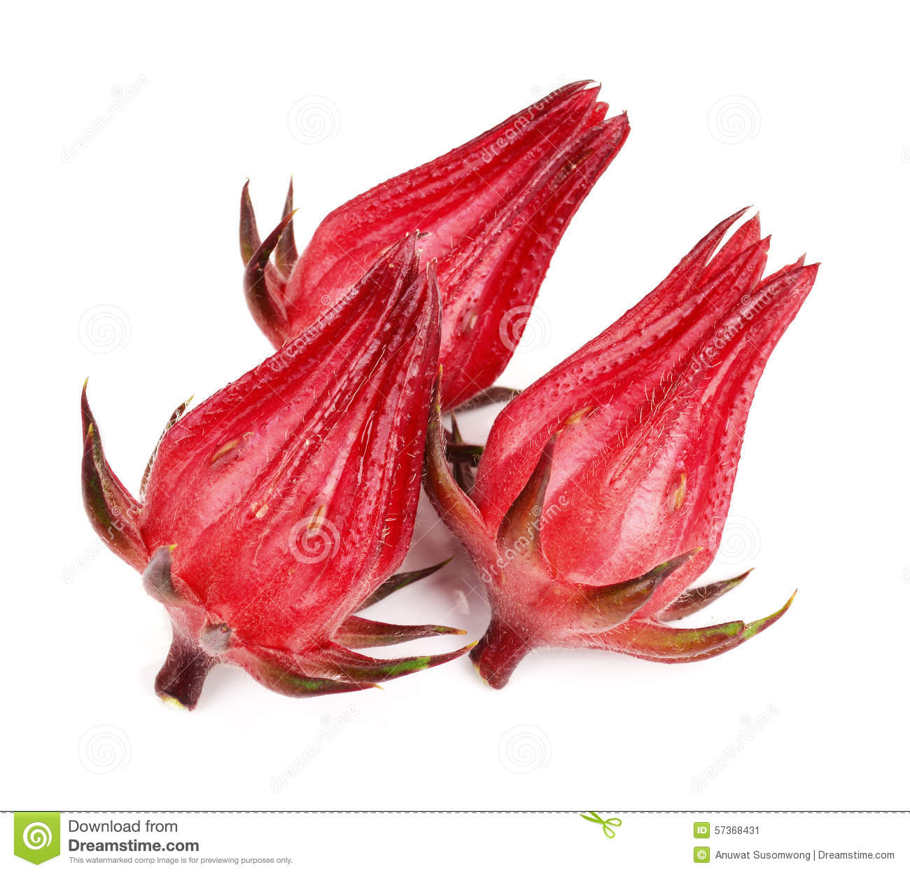 Roselle Fruits Royalty-Free Stock Image