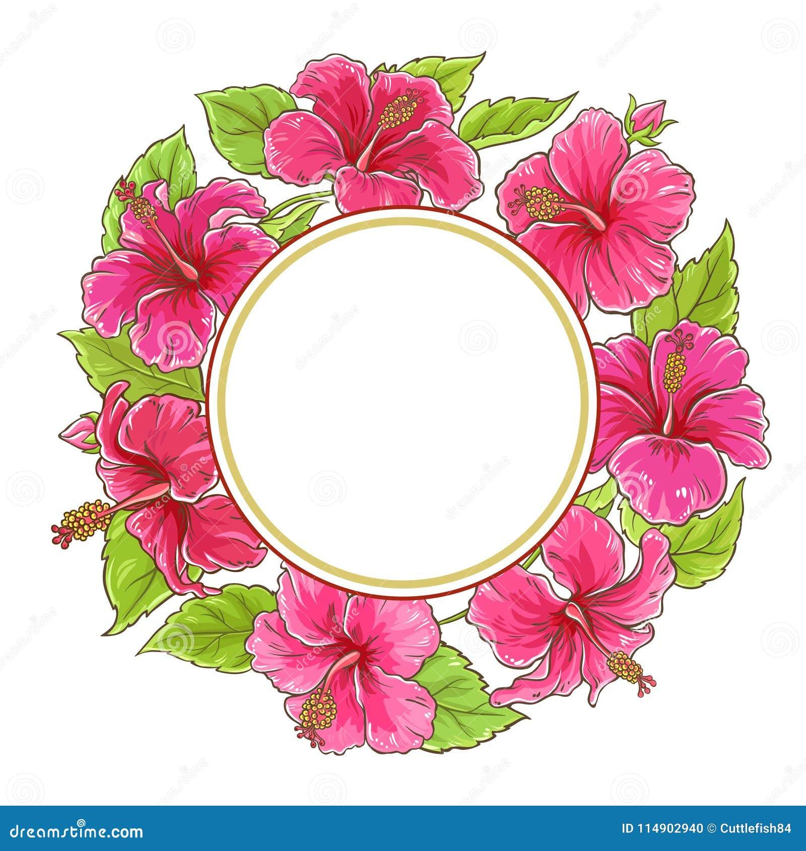 Hibiscus Vector Frame Stock Vector Illustration Of Cartoon 114902940