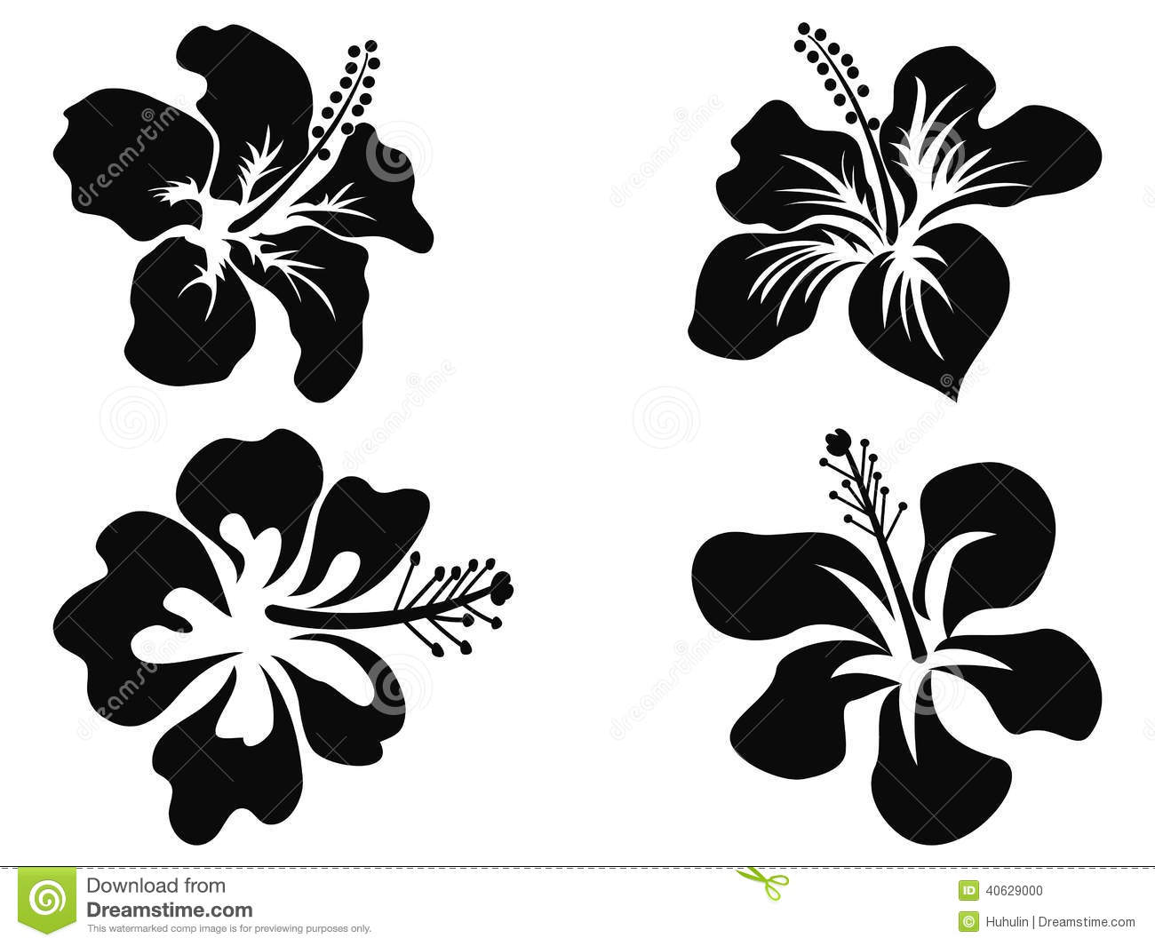 Hibiscus vector silhouettes stock vector illustration of fabric leaf 40629000 - Hibiscus images download ...