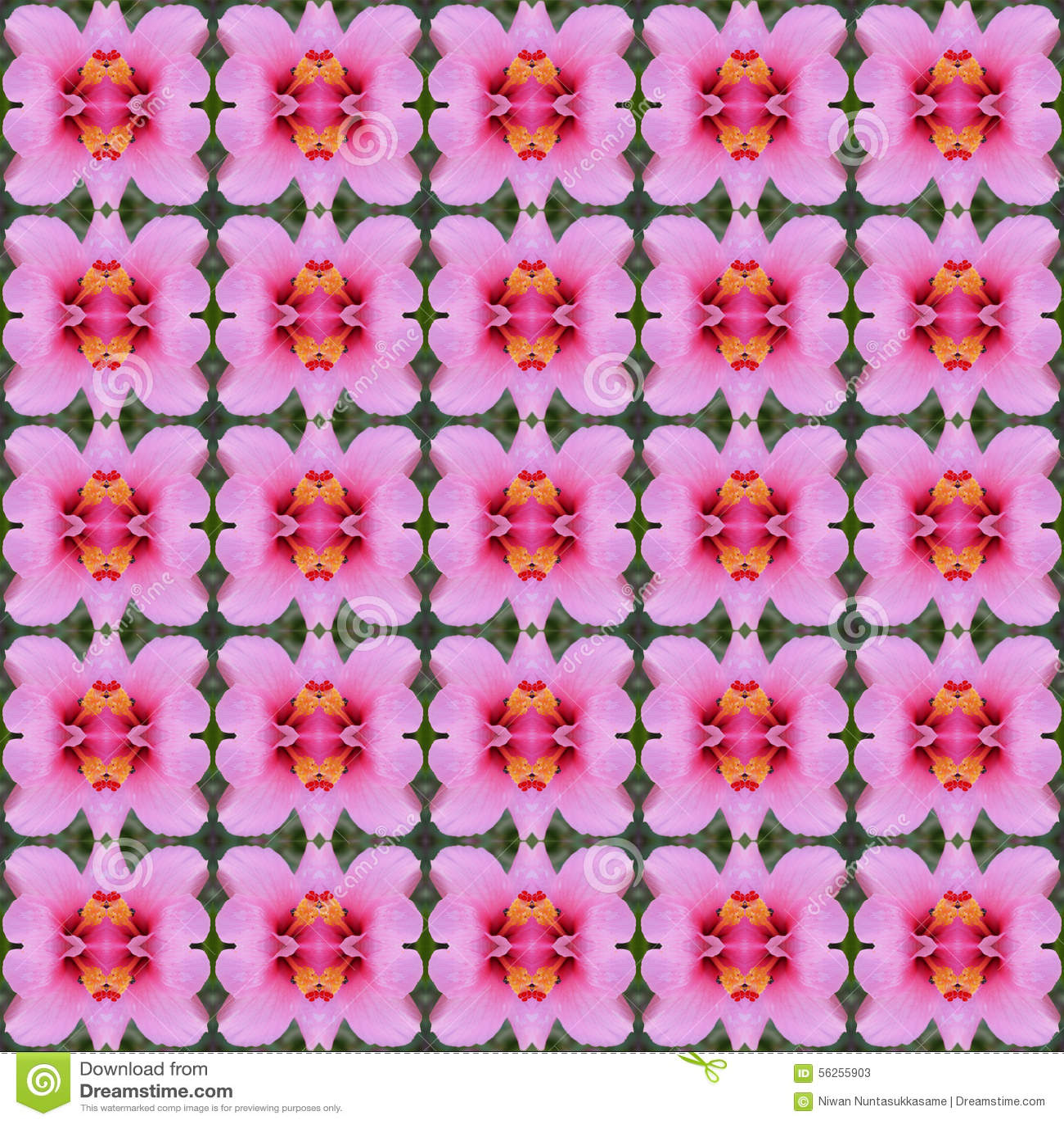 Hibiscusblume nahtlos