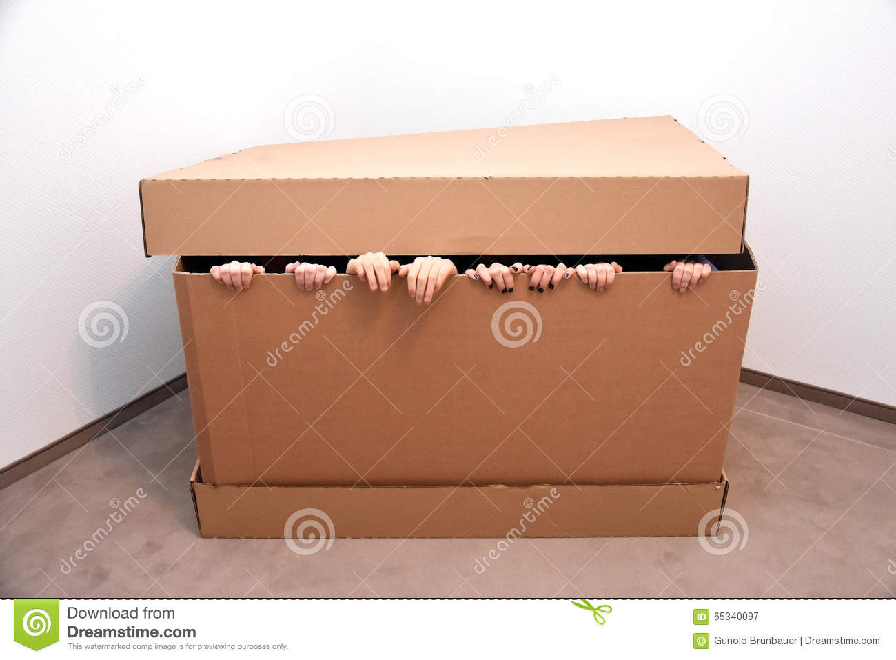 Hidden in a box stock image image of finger fingers 65340097 hidden in a box buycottarizona Gallery