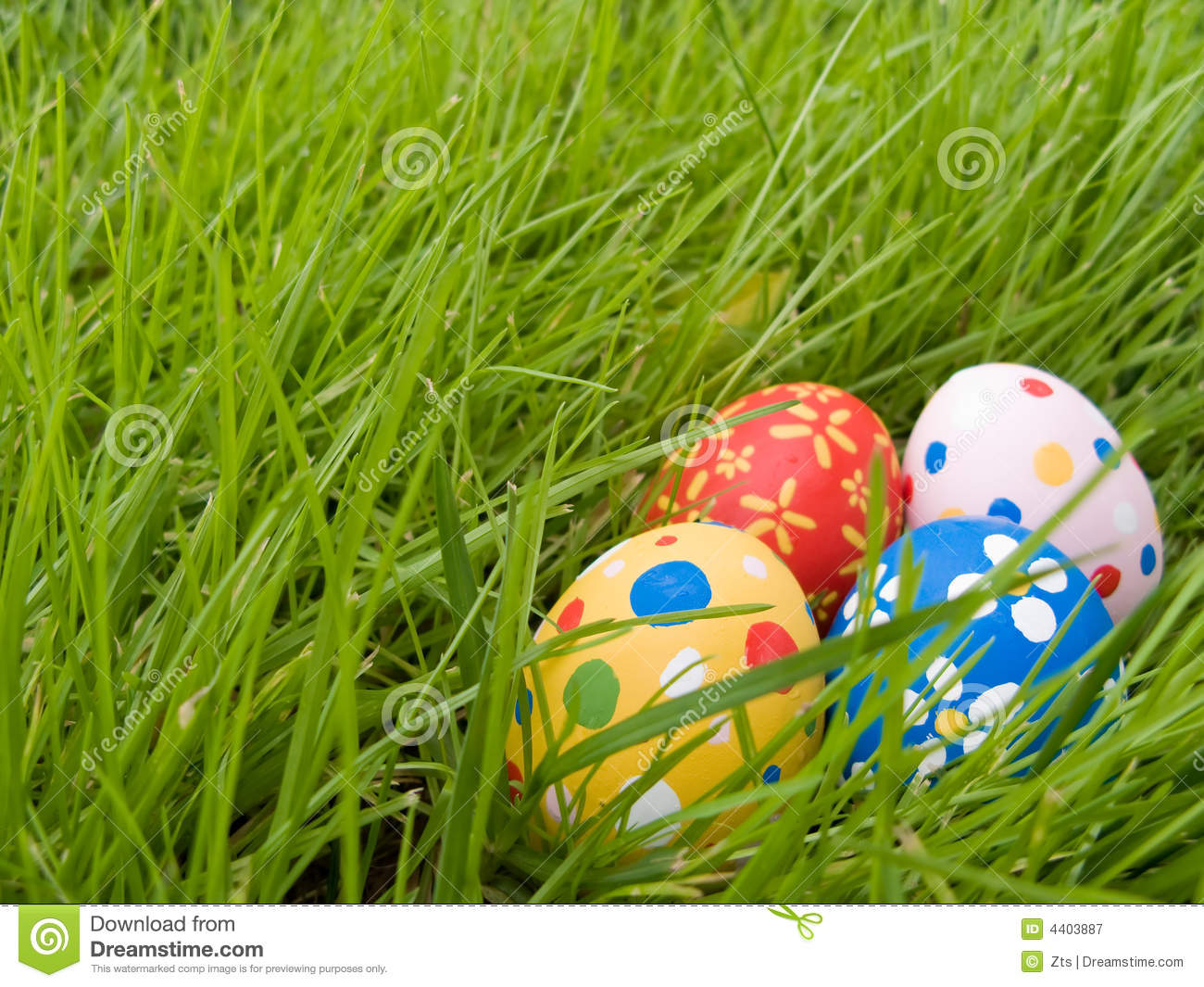 Hidden Easter Eggs Royalty Free Stock Photography - Image ...