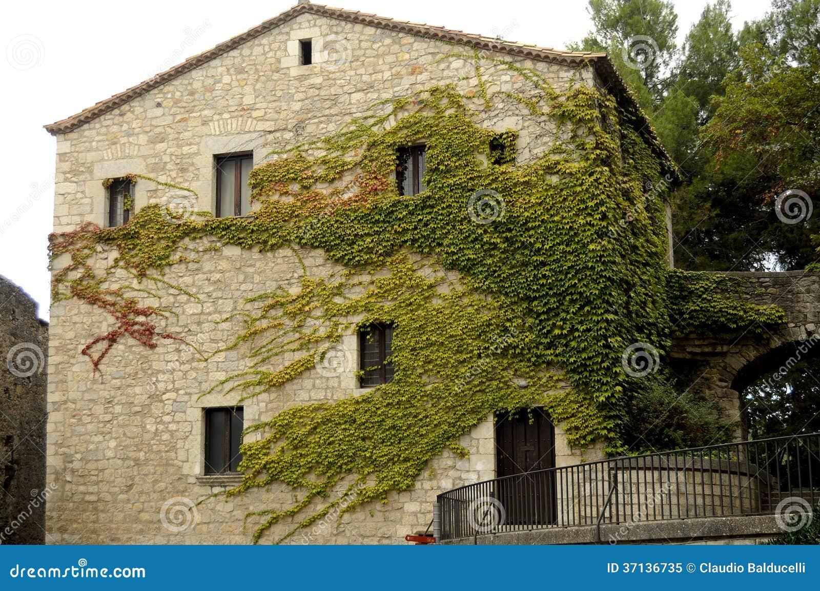 Hiedra en la fachada de la casa foto de archivo libre de for Case ricoperte di edera