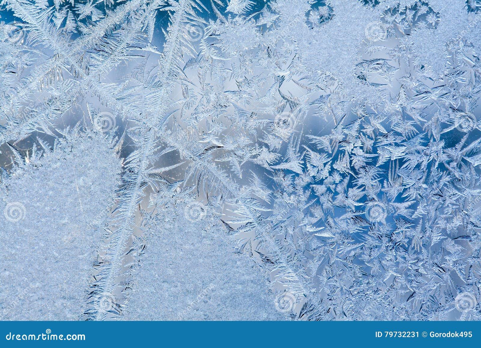 Hiele las flores y la opinión sucia congelada de la macro de la ventana Modelo de la textura de Frost Escena del invierno Foco su