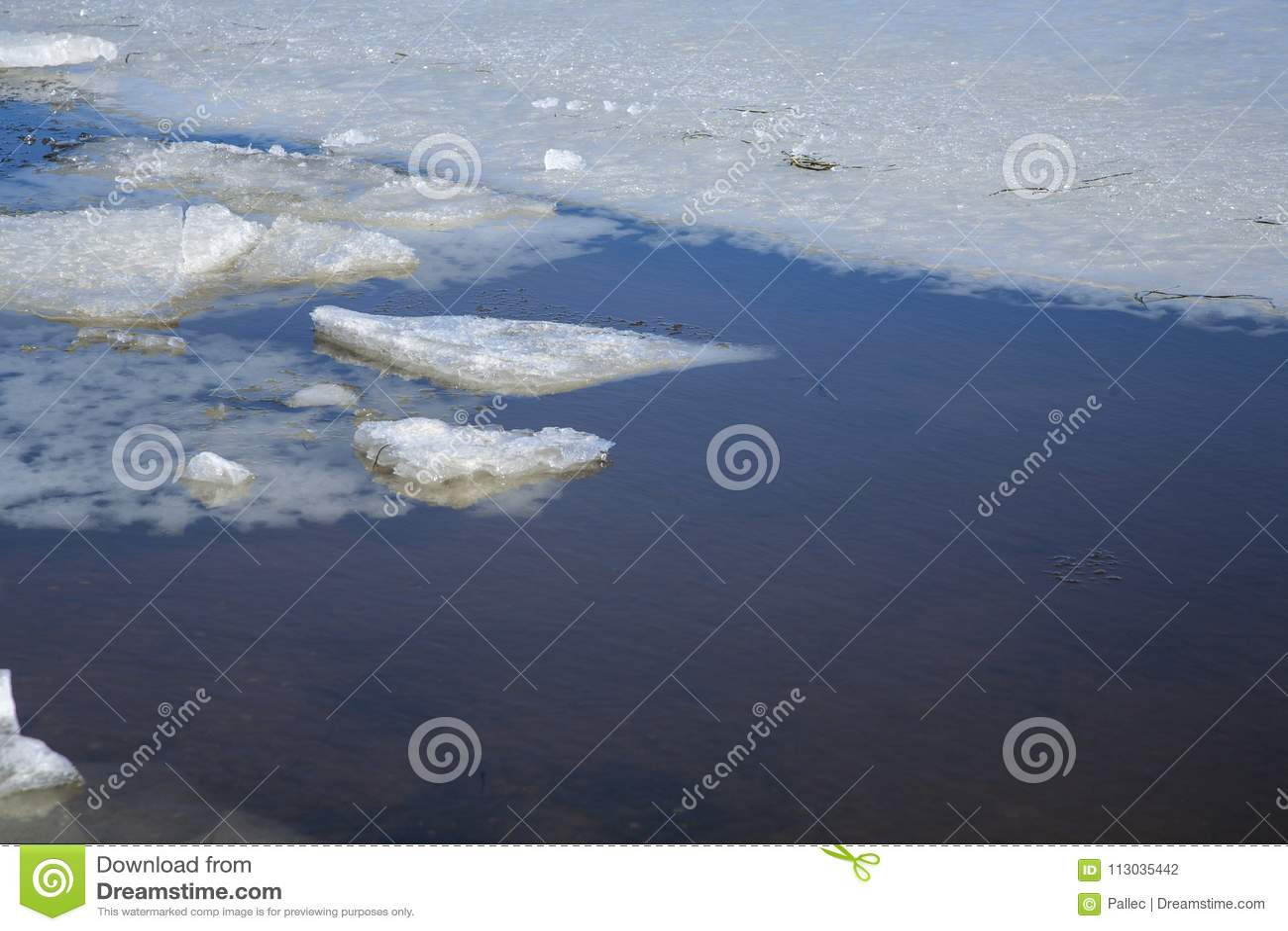 Hiele los pedazos en el océano con agua clara y helada