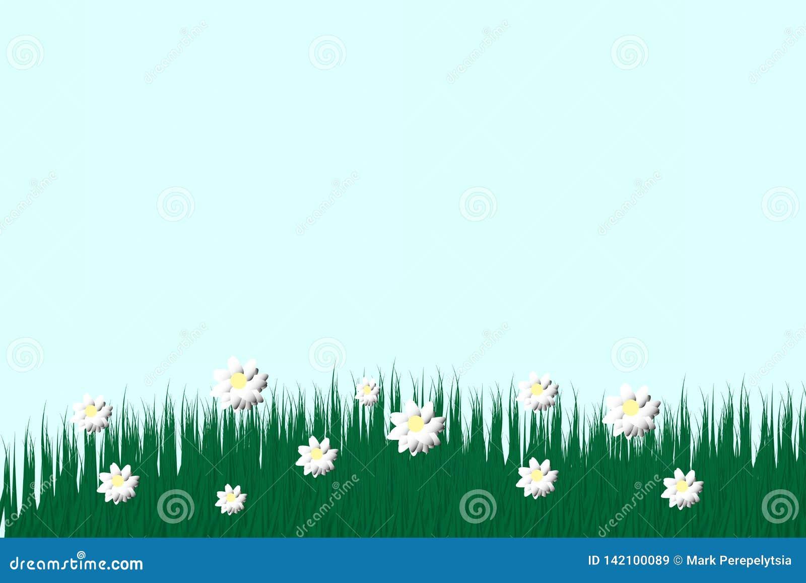 Hierba verde en un fondo transparente claro en la hierba del bosque Manzanillas en el claro