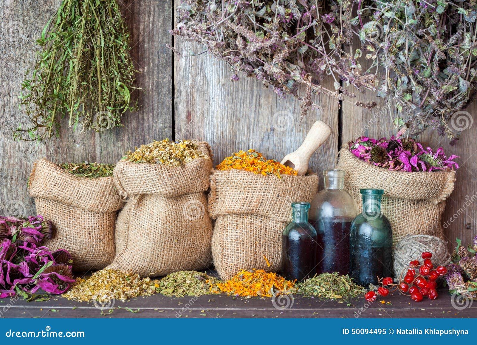 Hierbas curativas en bolsos de la arpillera y botellas de aceite esencial