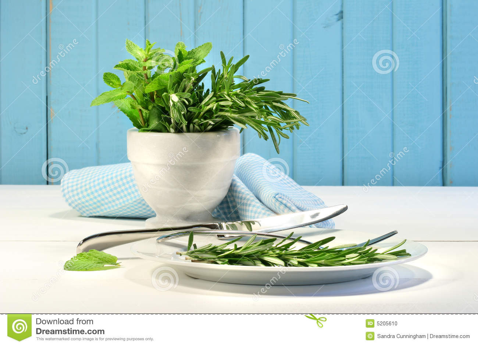 Hierbas frescas en el vector