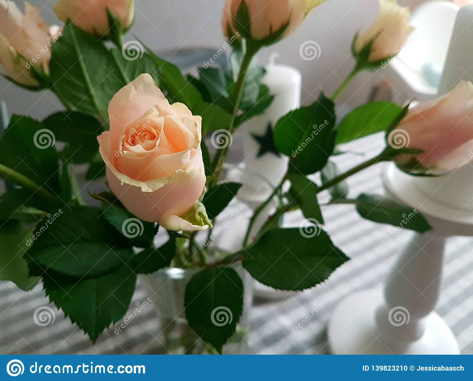 High angle view of roses on a kitchentable