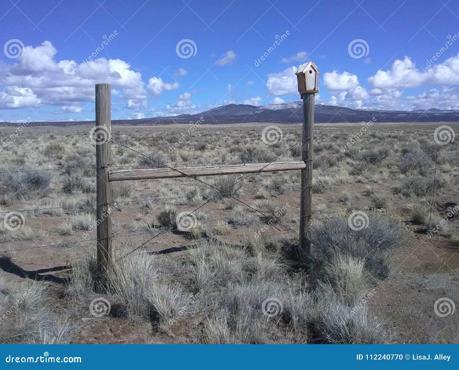 High desert bird house