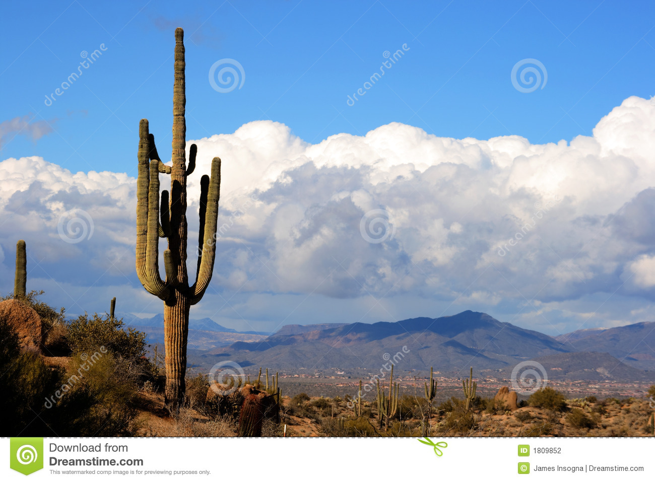 High Desert With Cactusmountains And Clouds Stock