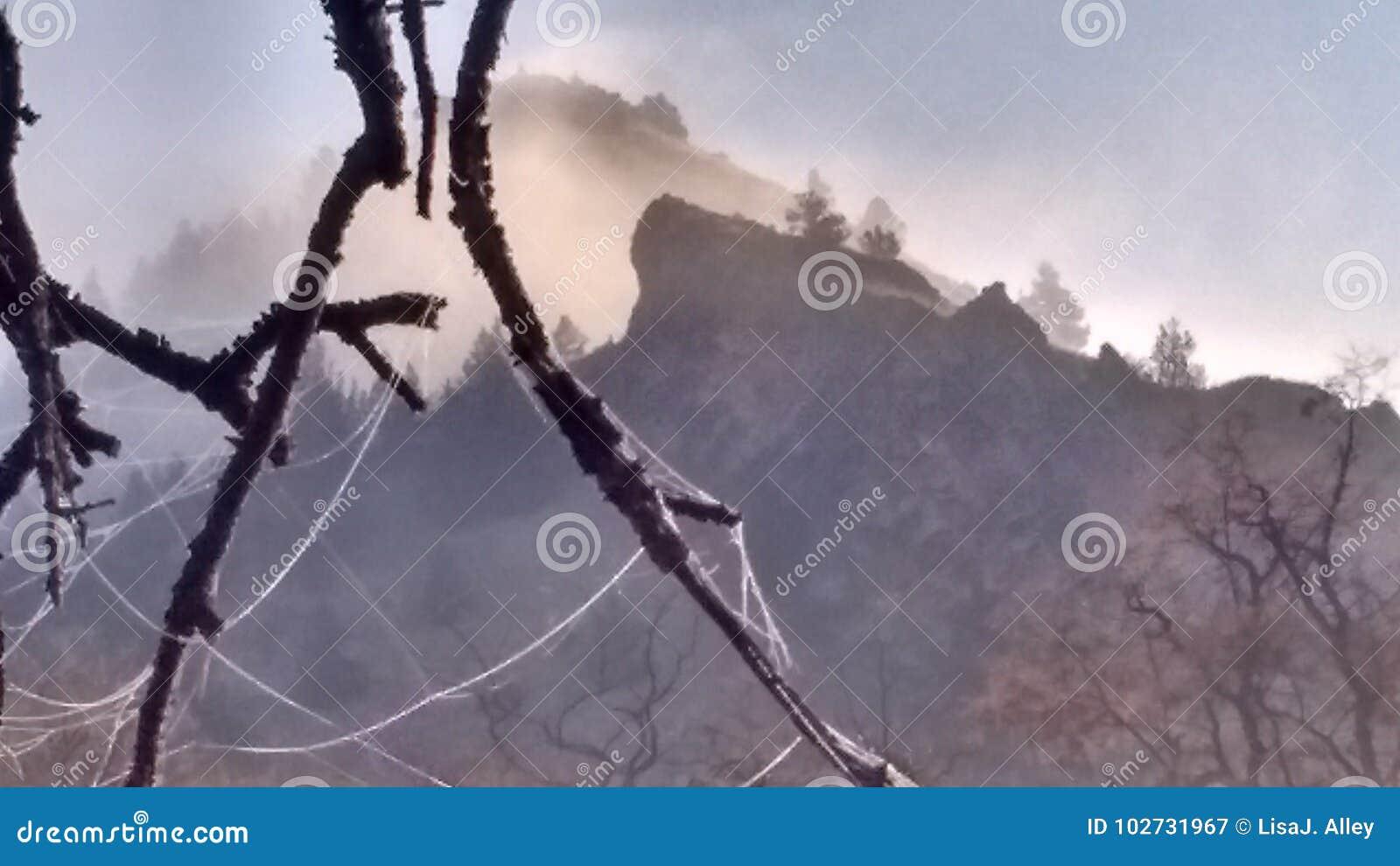 Autumn fog High Desert frosty morning